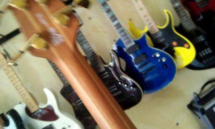 Jual Bass Washburn Taurus T25 Original