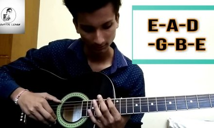 Learn Basics of Guitar | Intro and 1st Lesson (IN HINDI)