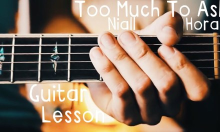 Too Much To Ask Niall Horan Guitar Lesson for Beginners // Too Much To Ask Guitar Tutorial