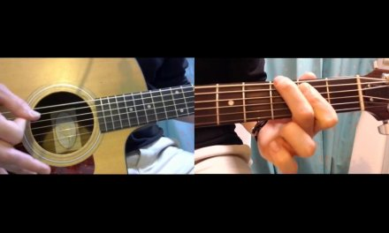 How to Play Guitar Lesson 4 (Continuing the Blues with some Tricks)