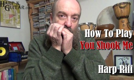 Blues Harmonica Lesson You Shook Me