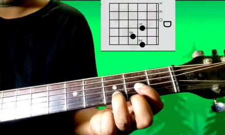 How to play guitar chords D Major #in hindi. beginners guitar lesson.