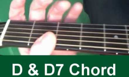 beginners guitar lessons – beginners guitar chords D