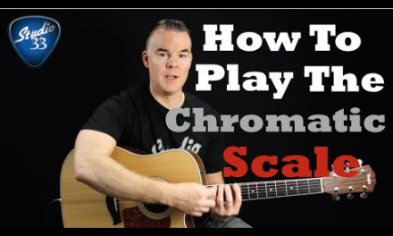 Proper Playing Technique and Playing Your First Scale, The Chromatic Scale. Beginner Guitar