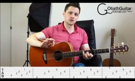 Hero – Family of the Year – Guitar Lesson & Tabs