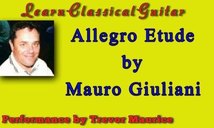 Allegro Guitar Lesson