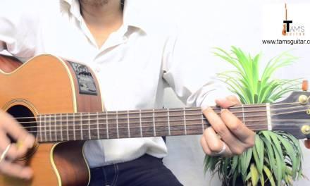 Shohorer ushnotomo dine  (Mohiner Ghoraguli) guitar lesson in Bengali  | www.tamsguitar.com