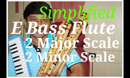How To Play Major and minor Scale on E Bass Flute in Hindi   G synth Musica   Milind Dangre