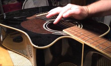 Vantage Acoustic Guitar Repair
