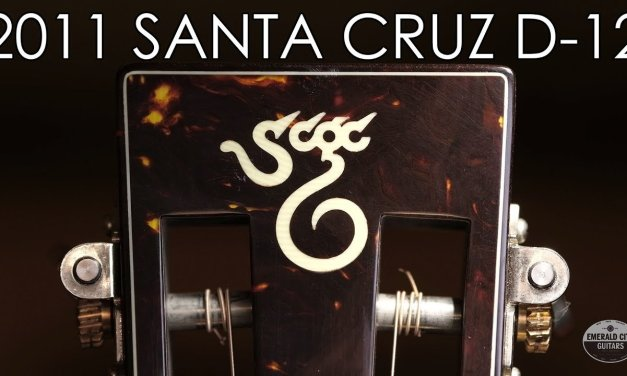 """Pick of the Day"" – 2011 Santa Cruz D-12"