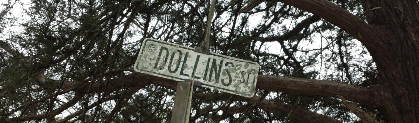 dollins_st2