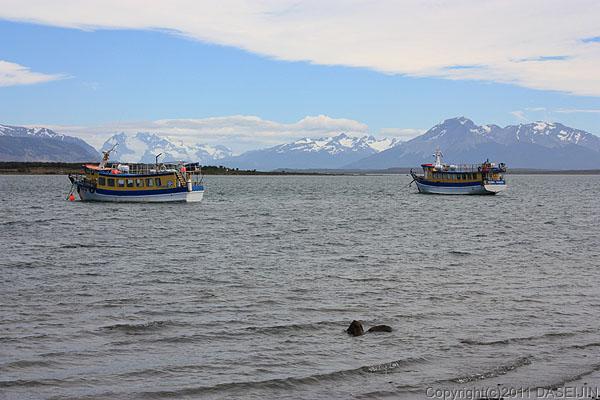 110101プエルト・ナタレス、ウルティマ・エスペランサ湾遊覧船とパイネ方面