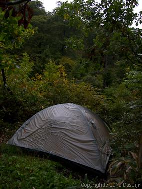 121007恋ノ岐・雨に濡れるテント