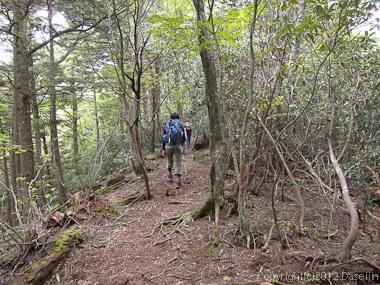 120623瑞牆山・みずがき山自然公園への道