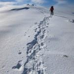 静寂の別世界、金峰山山頂~甲武信岳から金峰山(3)
