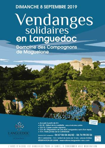 vendanges solidaires Maguelone