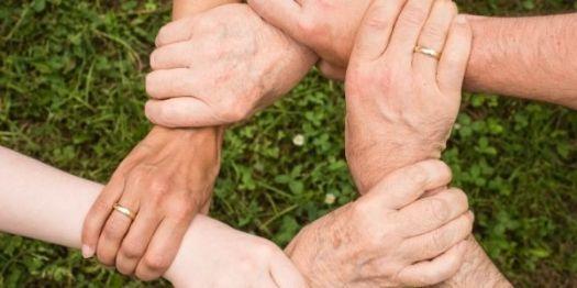 Qual a importância da holding familiar