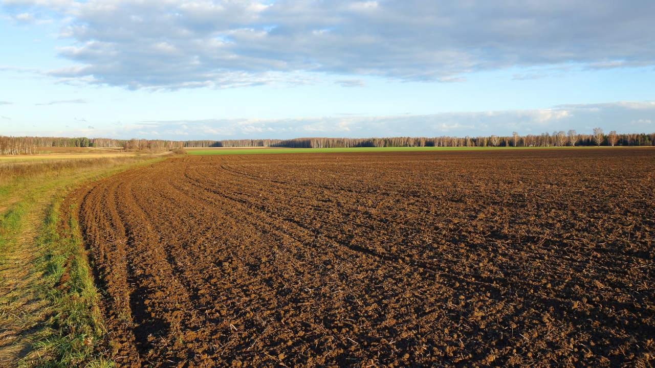 Manovra: Centinaio, in elaborazione proposta terreni gratis