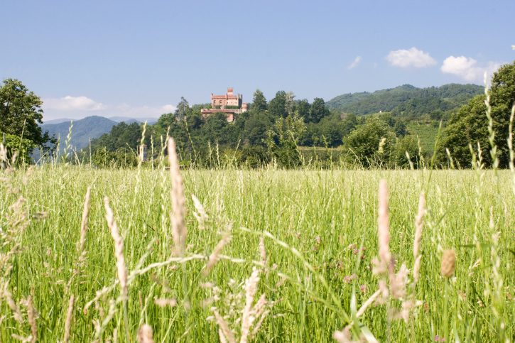 Piemonte assessore Ferrero: «Via al recupero delle terre abbandonate»
