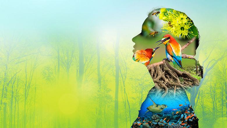 20 anni in nome della biodiversità