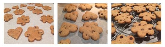biscotti di farro all'arancia4