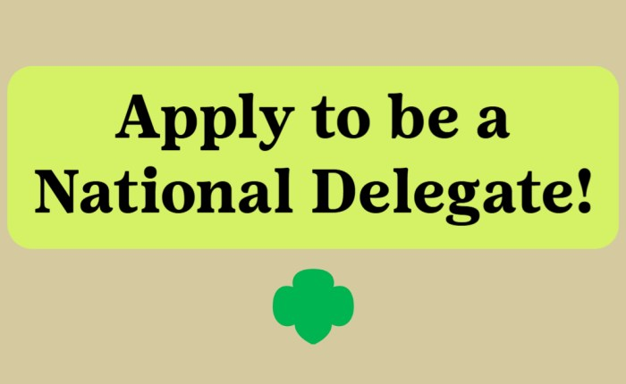 Apply to be a National Delegate for the National Council Session!