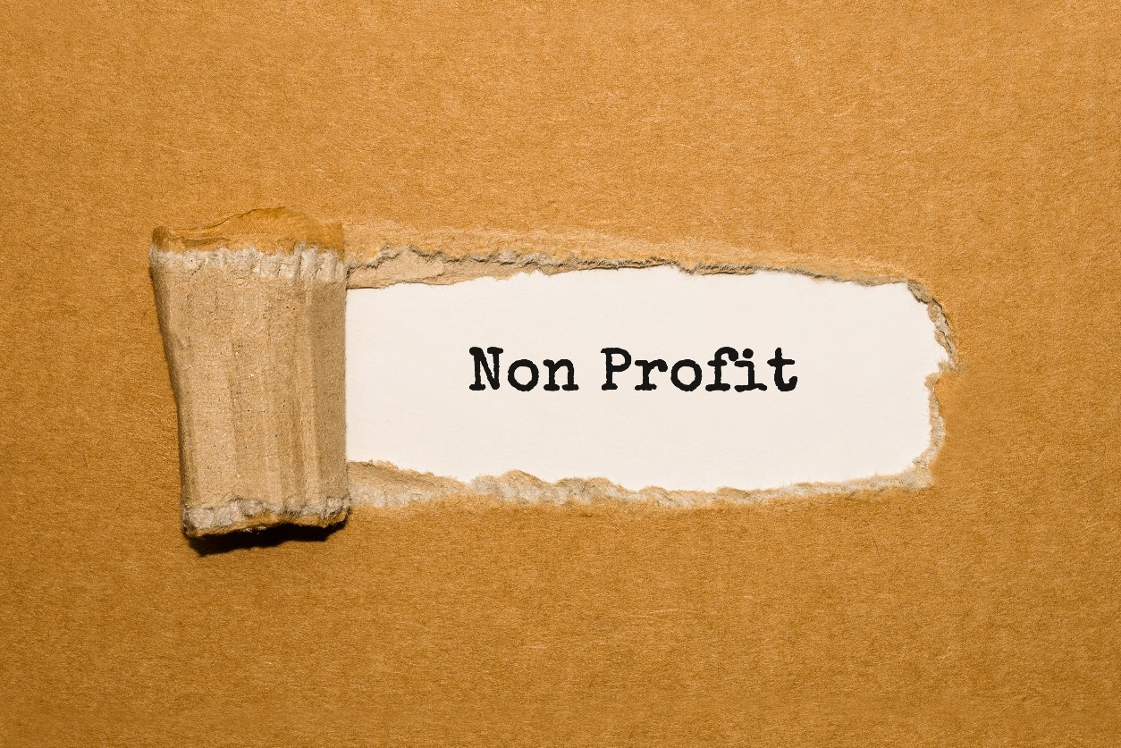 Small Nonprofits: How Do You Stack Up?