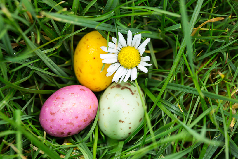Eggs-cellent Virtual Fundraising Ideas for Easter