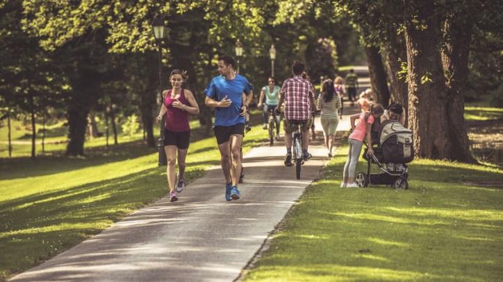 urban trail through park