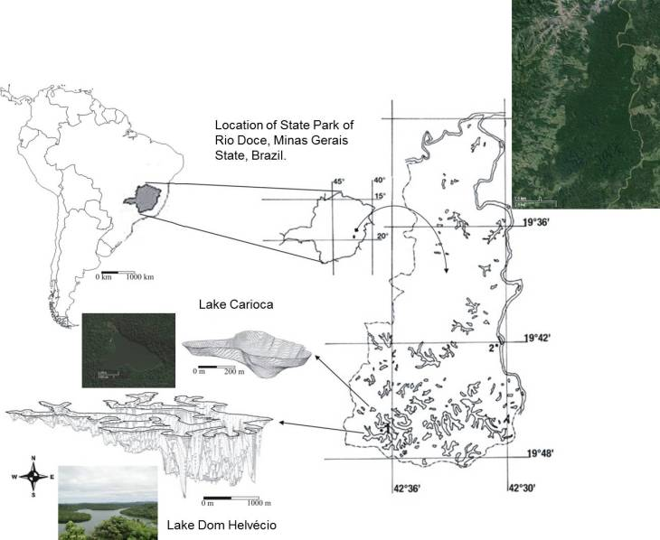 Location of Lakes Carioca and Dom Helvécio, State Park of Rio Doce, Minas Gerais state, Brazil.