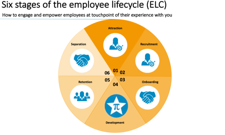 employee lifecycle