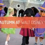 Spend Autumn at Walt Disney World!