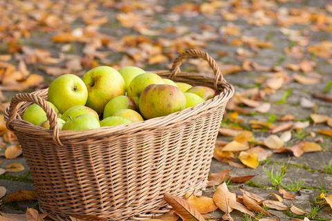 7 neobičnih činjenica o jabukama