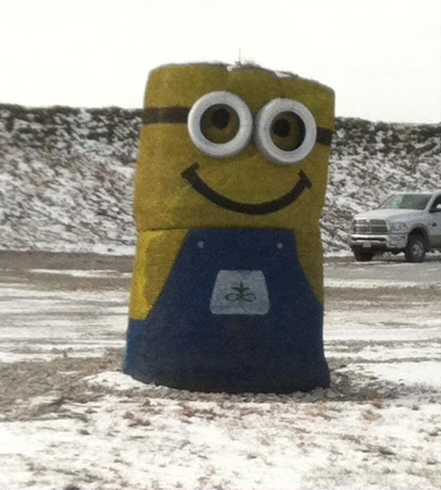 Minion in mountain