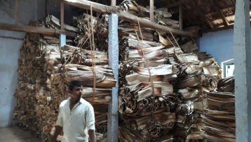 Ecogreeny_areca_palm_raw_materials