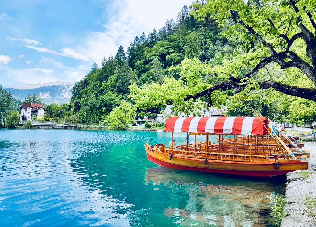 A row of wooden boats on Lake Bled in Slovenia.