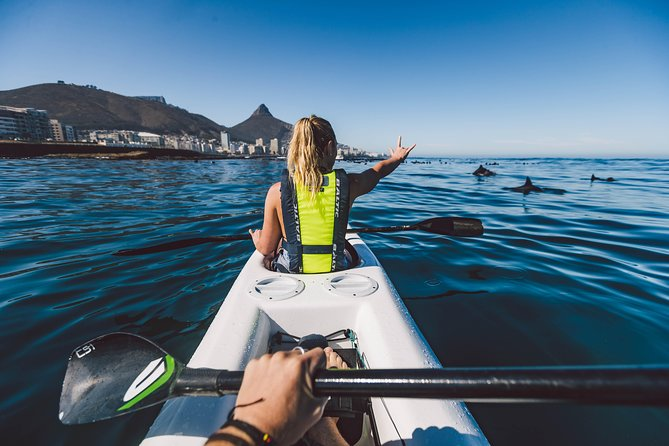 Two people kayaking on the Atlantic, surrounded by dolphins.