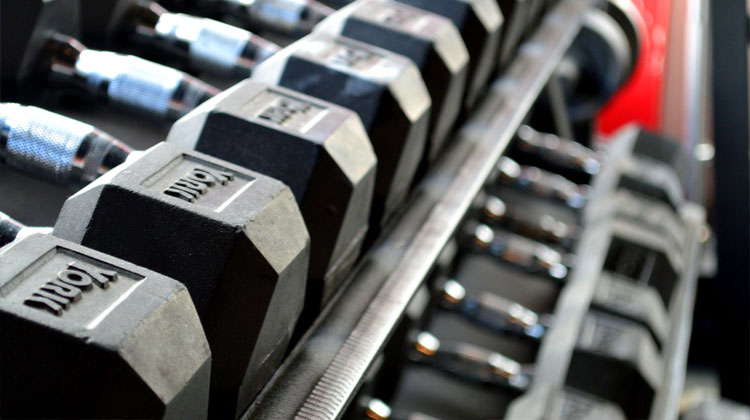 Barbells in the gym