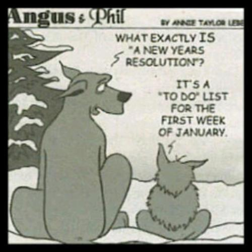 Funny-new-years-resolutions-what-is-a-new-years-resolution