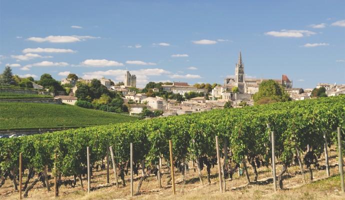 Wine tasting holidays active summer