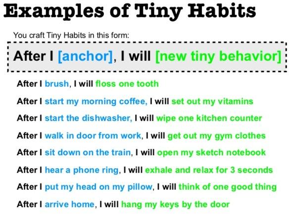 exemple de tiny habits