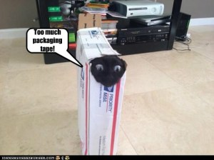 Cat-meme-too-much-tape-300x224 Collecting 101: Shipping and Packing Comics