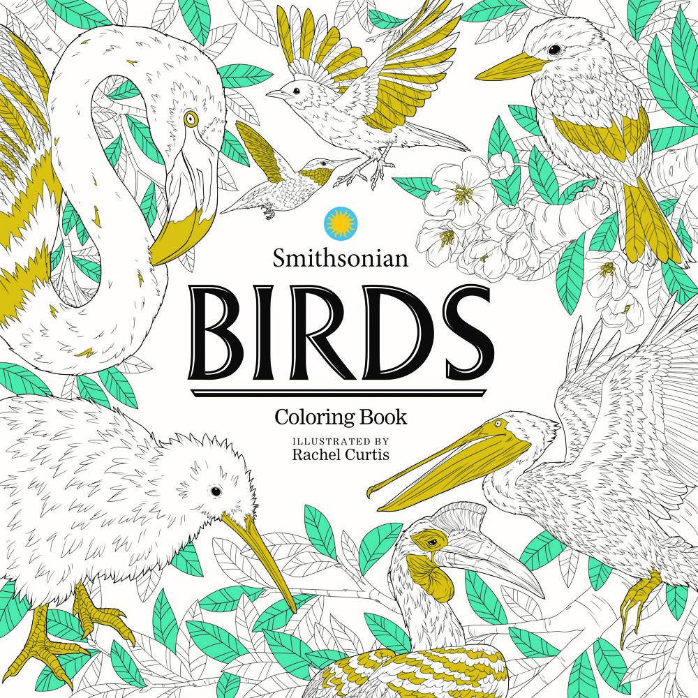 Birds_FrontCover_Ink_Spotcolor_w_Title ComicList: IDW Publishing New Releases for 05/26/2021
