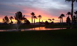 A Snowbird's Paradise – Westwind RV & Golf Resort