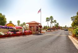 Pleasure & Journey Awaits in Apache Junction