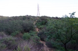 Runyon Canyon Park_ruck_26