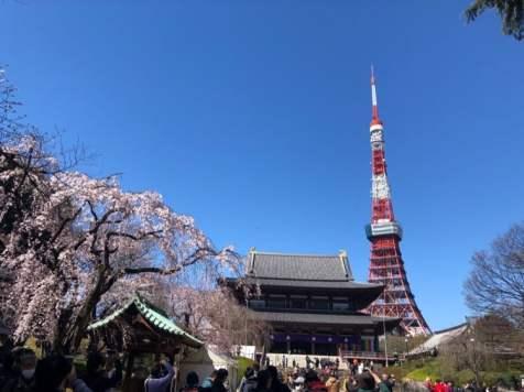JAPAN_MASK_7600