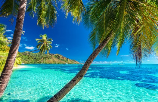 Explore The Islands of Tahiti on Your South Pacific ...