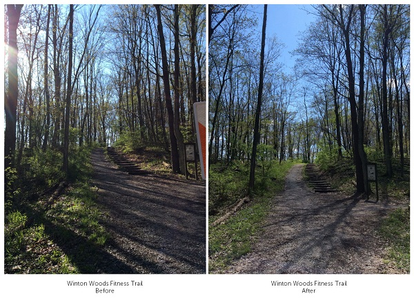EAB_before-after_2015