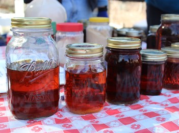 Jars of freshly made maple sugar line a table covered with a red-checked table cloth. The maple syrup in the jars ranges from an amber color to a deep brown.